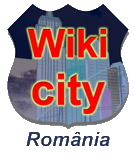 RoWikicity.png