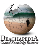 Beachpedia-Logo.png